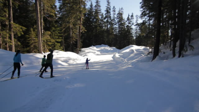 MS TS Family doing cross country skiing in winter day / Squamish, BC, Canada