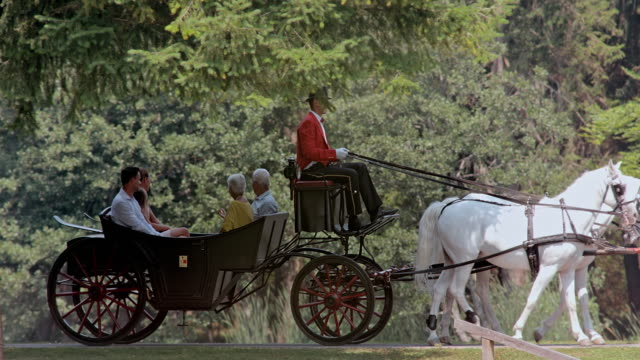 SLO MO Family enjoying a ride in horse drawn carriage