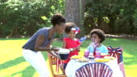 Family having Memorial Day or 4th of July picnic