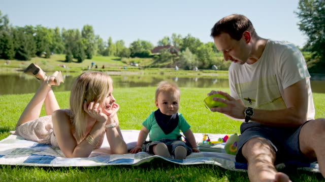 MS DS Family Having Picnic In The Park