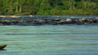 SLO MO WS Family in traditional rowboat in River Nego / Sao Gabriel da Cachoeira, Amazonas, Brazil