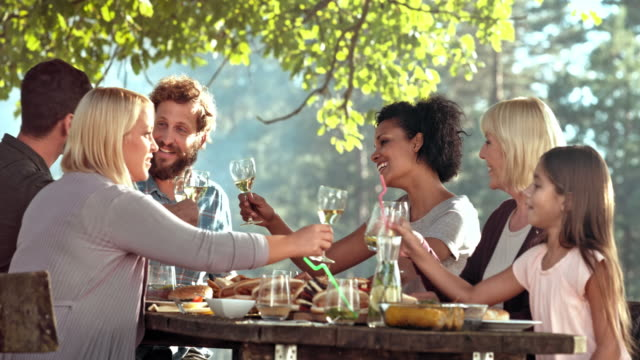 Family making a toast at the picnic table