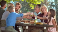 Family members clinking glasses at a picnic