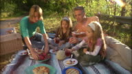 Family of four having picnic in rural area and toasting
