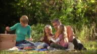 Family of four having picnic on grass
