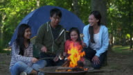 WS ZI Family on Camping Vacation, Roasting Marshmallows Over Camp Fire / Richmond, Virginia, United States