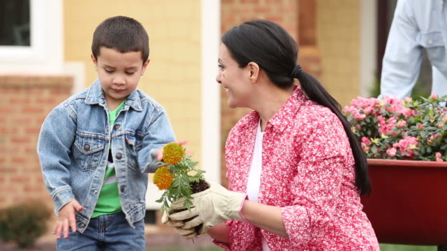 MS DS Family Planting Flowers in Garden in Front of Home / Richmond, Virginia, USA