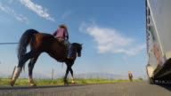 Family Riding Horses on a Country Road