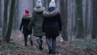 R/F Family walking through a forest with lanterns