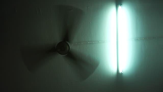 Fan and bulbs.