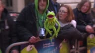 ATMOSPHERE Fans at 'The Muppets Most Wanted' VIP Gala Screening at The Curzon Mayfair on March 24 2014 in London England