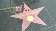 Fans lay flowers and a wreath on Zsa Zsa Gabor's star on the Hollywood Walk of Fame to honor the late actress