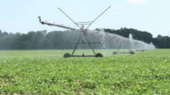 Farm Crop Irrigation