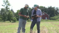 Farmer and agricultural consultant in field of GMO soybeans