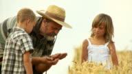 HD: Farmer And His Grandchildren