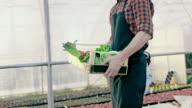 SLO-MO-Farmer tragen eine Kiste voll mit Gemüse
