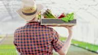 SLO MO DS Bauer Transport Kiste voll mit Gemüse im Gewächshaus