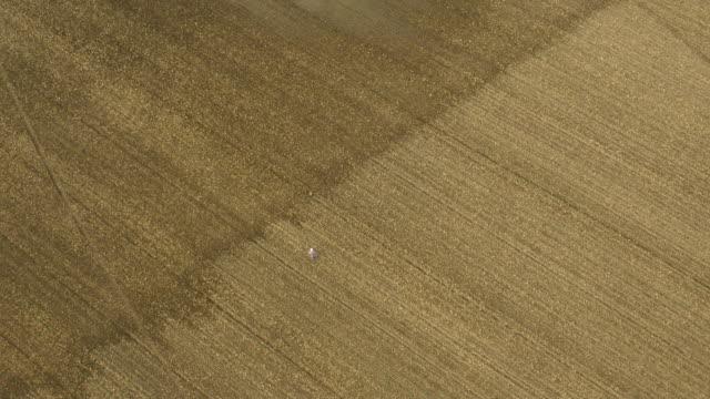 AERIAL Farmer checking a flooded corn field