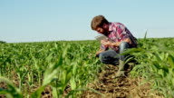 LS DS Farmer Checking Harvest With Digital Tablet