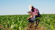 LS DS Farmer, die mit einem digitalen Tablet-Pflanzen