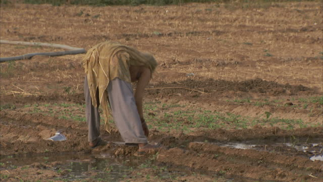 A farmer checks irrigation in a field.