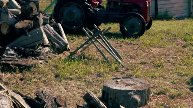 Farmer Chops Wood with Axe 2
