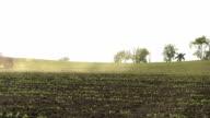 WS TU Farmer cultivating field of organic soybeans / Columbus, Wisconsin, USA