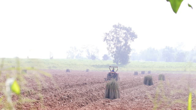 boer trekker ploegen cassave veld stuurprogramma