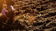 Boer bodem te onderzoeken. Landbouw achtergrond.