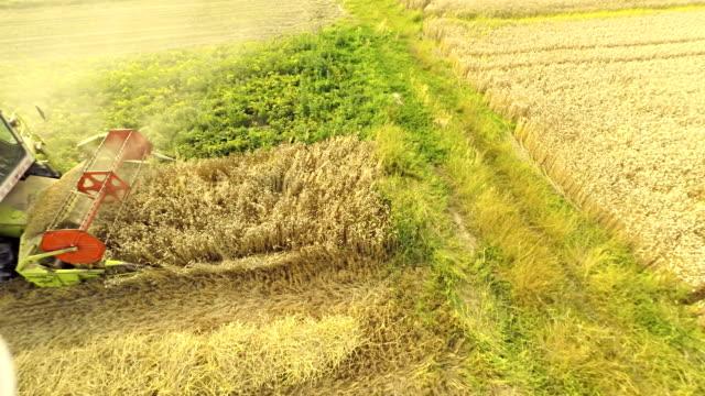 AERIAL Farmer Harvesting The Wheat