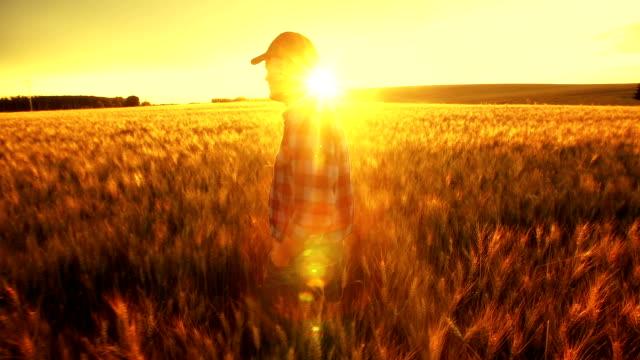 Agricoltore nel guardare il successo della sua coltivazione.