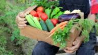 Farmer pflücken Gemüse