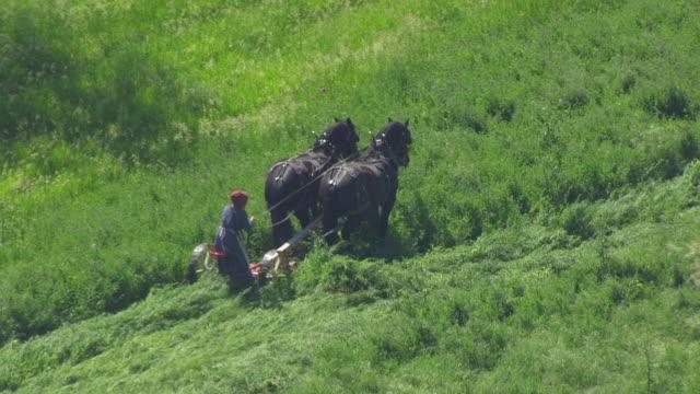 WS AERIAL POV Farmer ploughing the field through horsedrawn / Iowa, United States