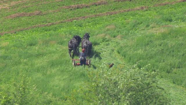 WS TS AERIAL POV Farmer ploughing the field through horsedrawn / Iowa, United States