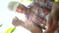 SLO MO Farmer Pouring Corn Crop
