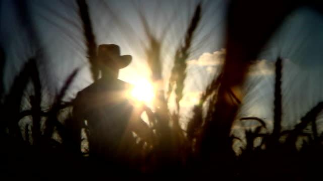 Agricoltore silhouette posteriore