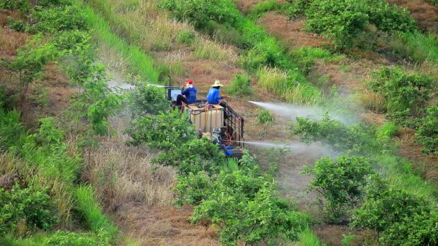 Farmer  spraying pesticide or fertilizer in field