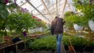 Farmer Spraying Water On Plants In Greenhouse