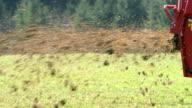 SLO MO Farmer spreading manure over the grass