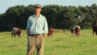 MS Farmer standing in field and looking around, cows grazing in background / St Albans, Hertfordshire, United Kingdom