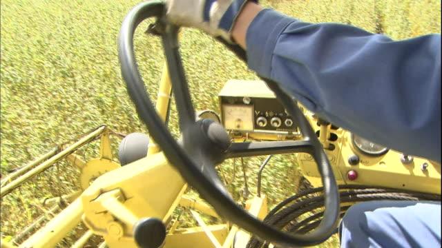 A farmer steers a combine harvester as it cuts buckwheat in Hokkaido, Japan.