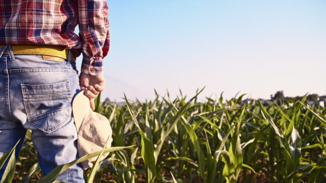 SLO MO bonden tar av mössan i fältet