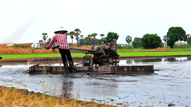 farmer use tractor working in farm for plant rice of thailand