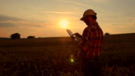 WS DS Farmer Using A Digital Tablet In Field