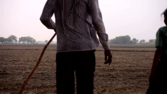 Farmer walking in the field with his daughter