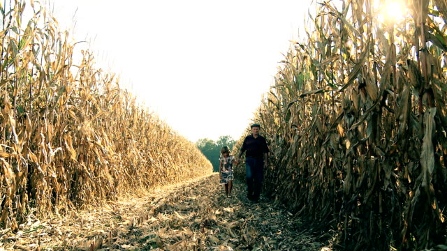 HD DOLLY: Farmer Walking With Child In Corn Field