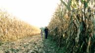 HD DOLLY: Farmer Walking With Child In Corn Field