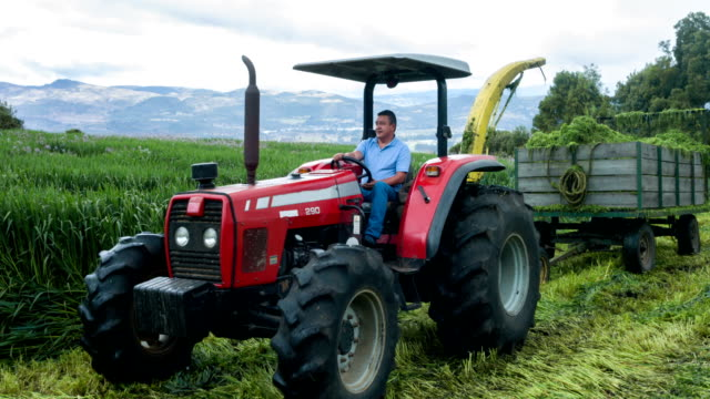Farmer working at the farm with a tractor