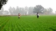 Landwirt Arbeiten im Feld