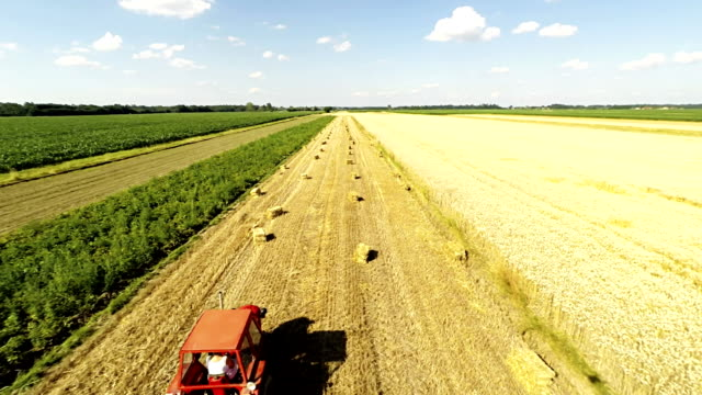 AERIAL Farmers And Bales Of Wheat